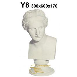 Y8 Venice