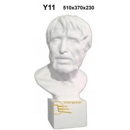 Busto em Gesso Y11